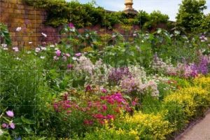 Would the garden be this pretty without the work of a gardener?